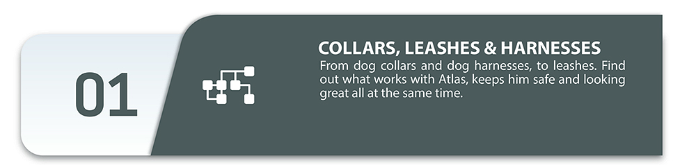 Collars, leashes and harnesses