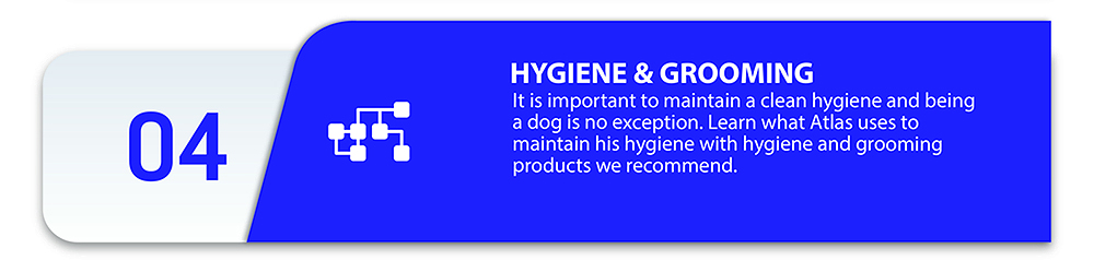 Hygiene and grooming