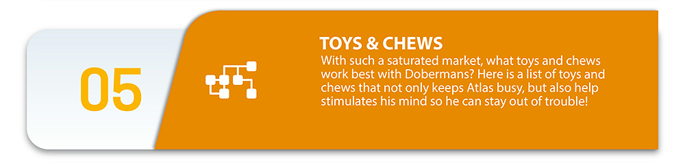 Toys and chews