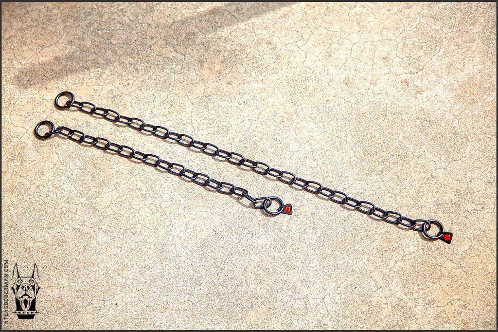 "Herm Sprenger slip chain collar; 15"" lower, 22"" upper. Doberman puppy's first walk."